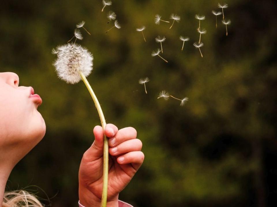 Cum să-ți pui o dorință ca ea să se împlineasacă. Foto: Ivan Dostal / Unsplash