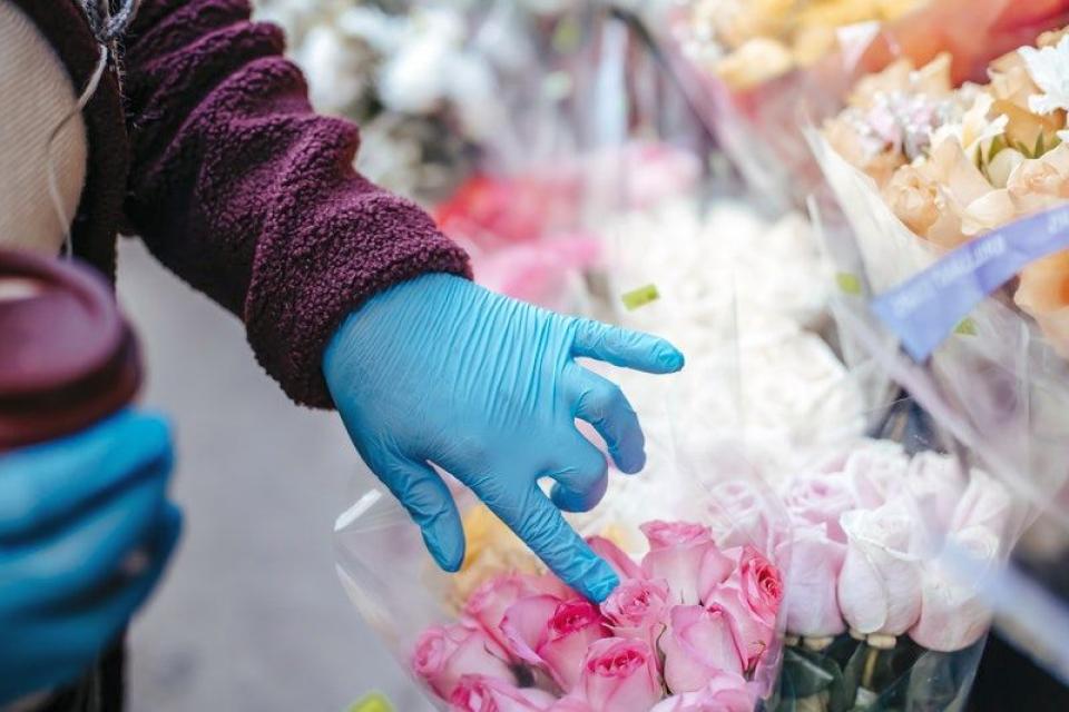 Monica Pop revoltată de ideea ca florile și mărțișoarele să se ofere cu mănuși. Foto: Pexels