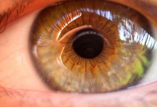 Vederea bună poate fi susținută prin alimentație corectă. Foto: Pixabay