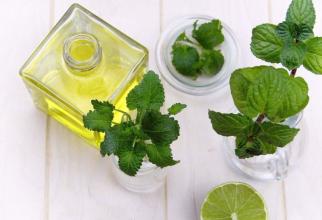 Uleiul de mentă, un bun remediu natural. Foto: Pixabay