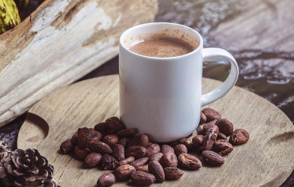 Cacao. Foto: Pixabay
