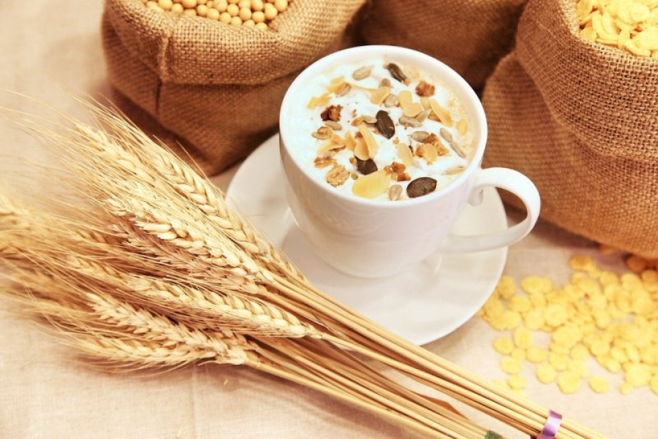 Cerealele nu mai conțin atât de mult gluten precum se crede. Foto: Pixabay