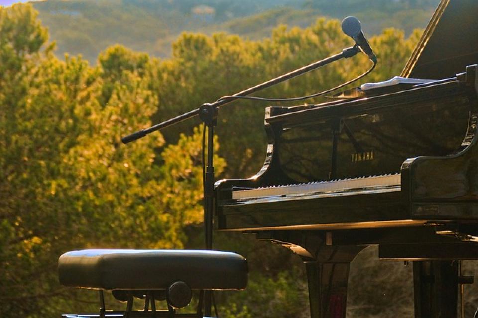 Concert în aer liber  FOTO: pixabay