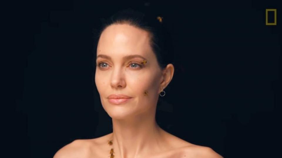 Angelina Jolie abia dacă a clipit când albinele i s-au așezat pe față. Foto: Print screen National Geographic