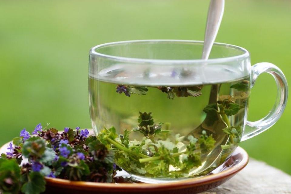 Ceai de plante. Foto: Pixabay
