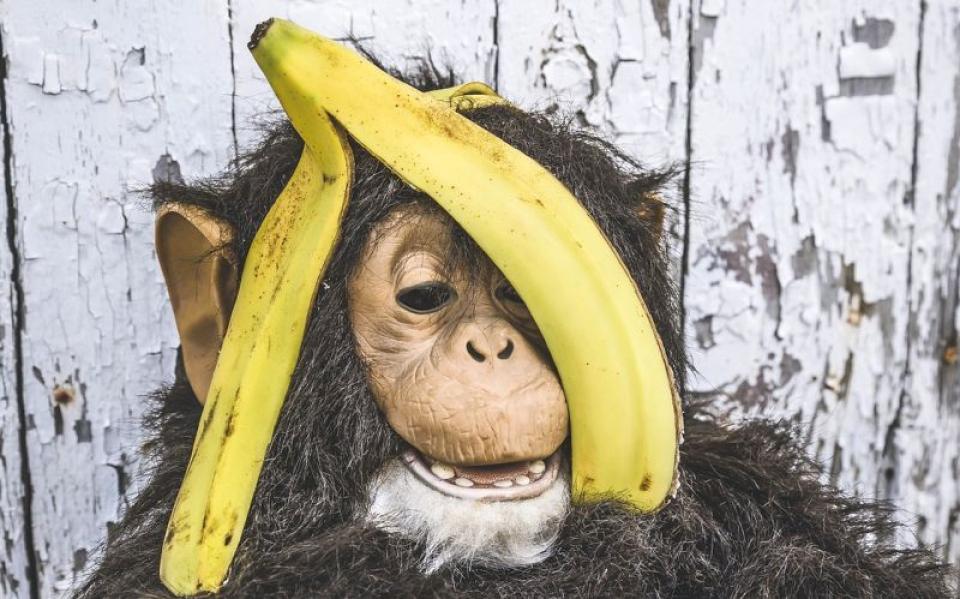 La ce sunt bune cojile de banană. Foto: Pixabay