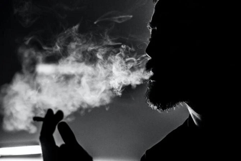Nicotina     Sursa foto: Fotografie creată de Petar Starčević, Pexels