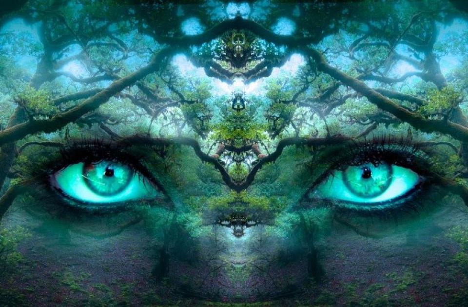 Zodiacul nerealiștilor, care trăiesc într-o lume a lor și refuză adevărul. Foto: Pixabay