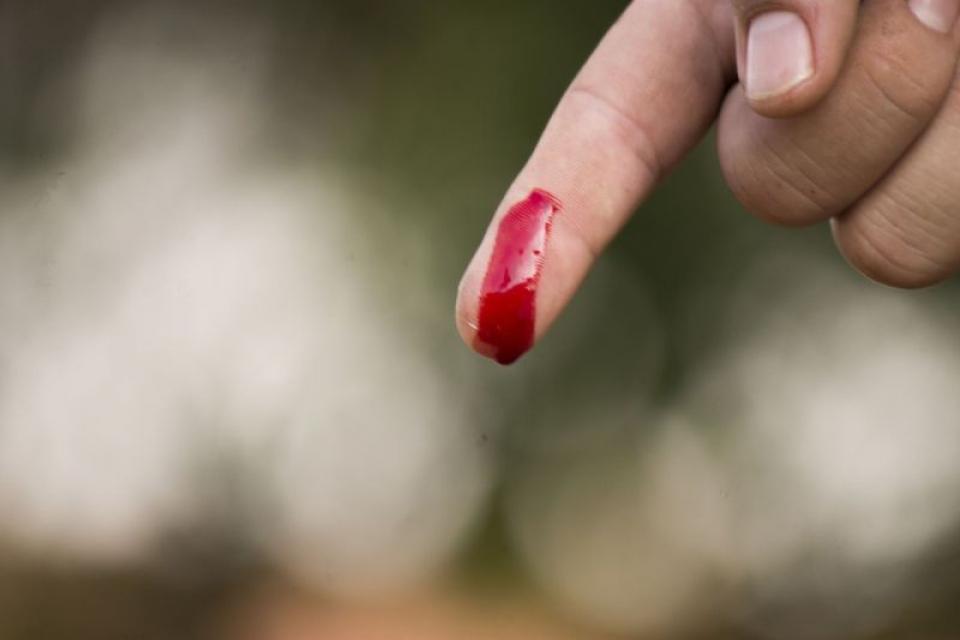 Sângele spune multe despre caracterul unui om. Foto: Pixabay