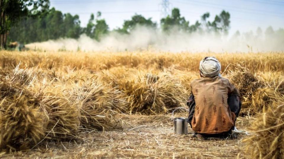 Un muncitor în vârstă de 27 de ani a murit din cauza căldurii. Fotografie cu caracter ilustrativ Pixabay