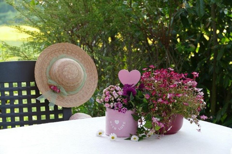 Trucuri pentru flori frumoase și sănătoase în ghiveci  FOTO: pixabay