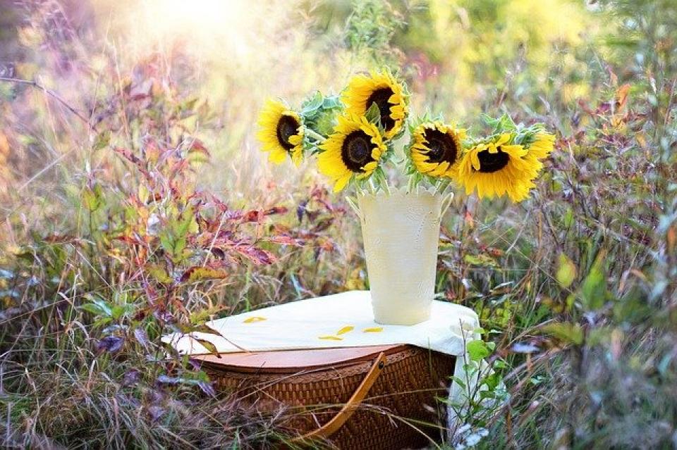 Buchet de flori în vază  FOTO: pixabay