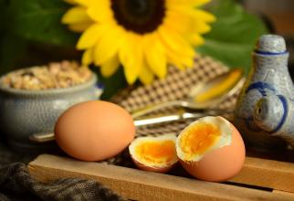 Beneficiile consumului de ouă