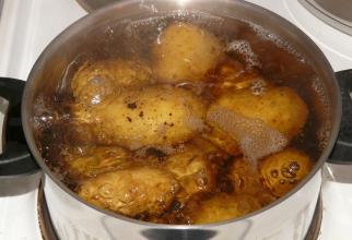 Cartofi puși la fiert. Foto. Pixabay
