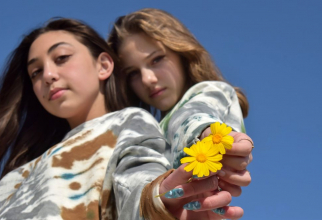 Fetele sunt mult mai afectate mental de pandemia COVID-19. Foto: Pixabay