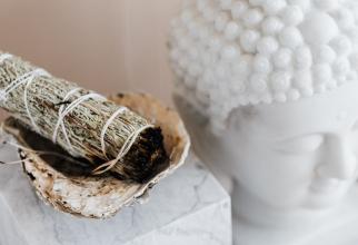 Salvia arsă aduce numeroase beneficii. Foto Pixabay