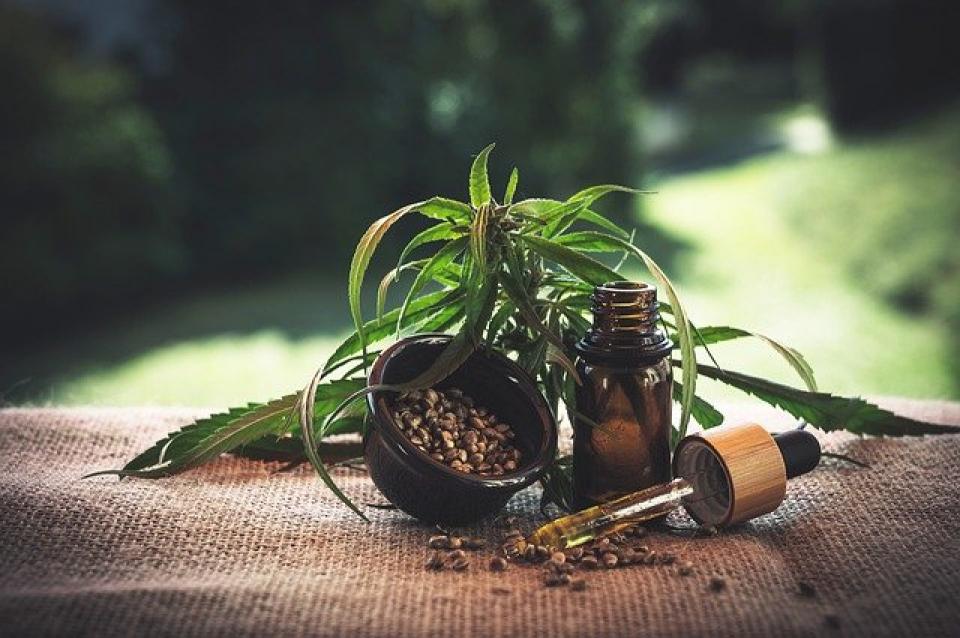 Ulei din semințe de cânepă     Foto: pixabay.com