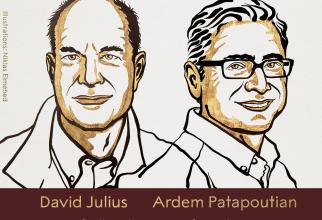 Câștigătorii Premiului Nobel  FOTO: Facebook Nobel Prize